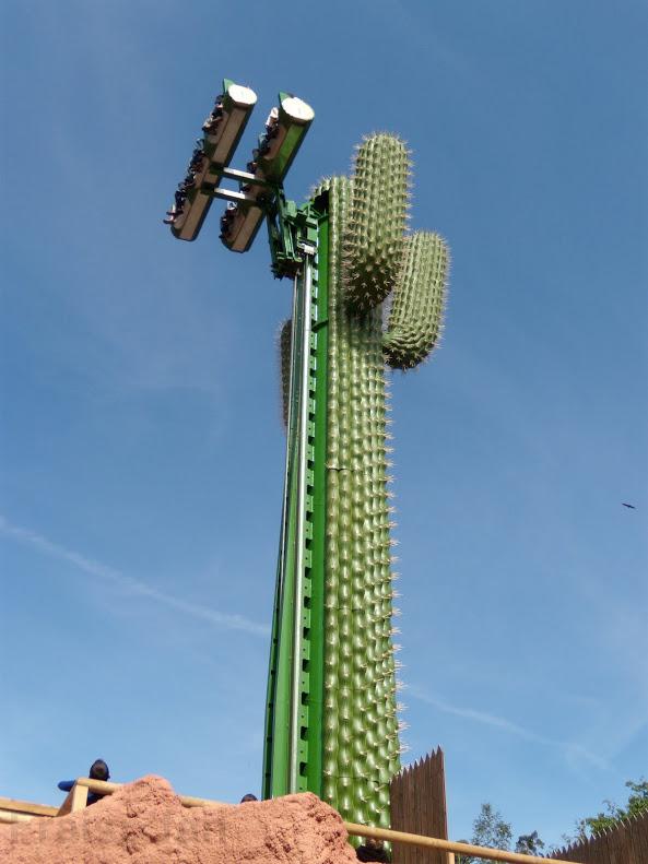 le_cactus_-_attraction_-_301