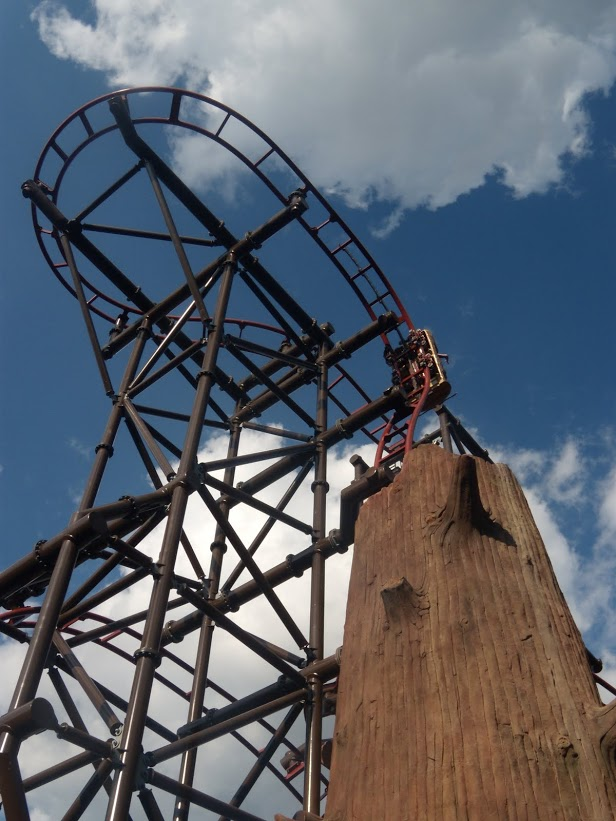Timberdrop-attraction-04