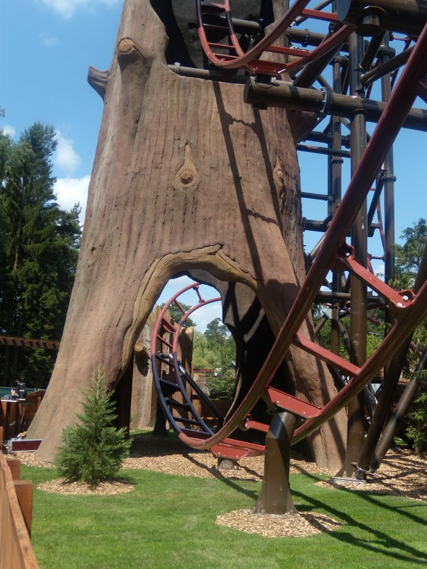 Timberdrop-attraction-07