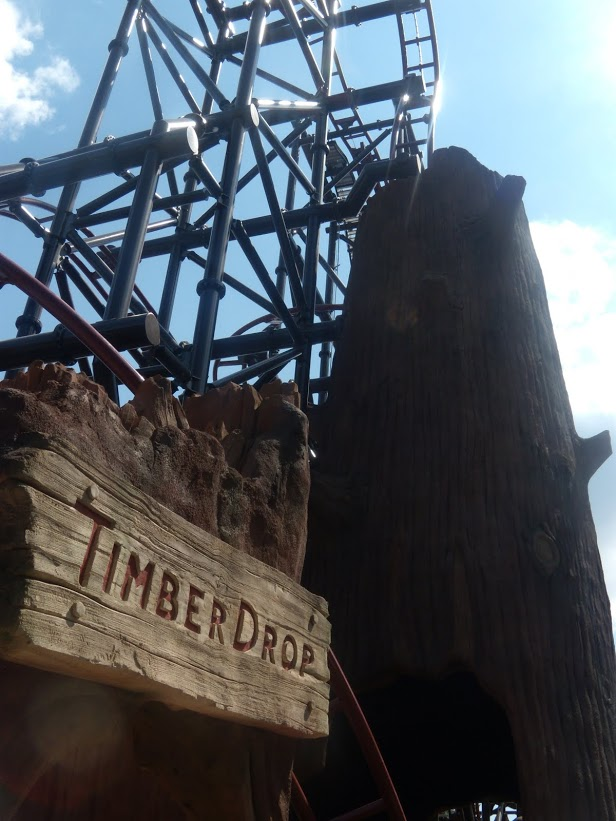 Timberdrop-attraction-11