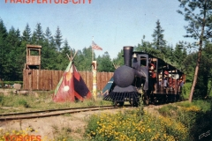 Disparue - Train Far West - 03