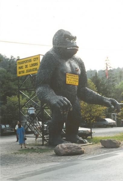 gorille 10