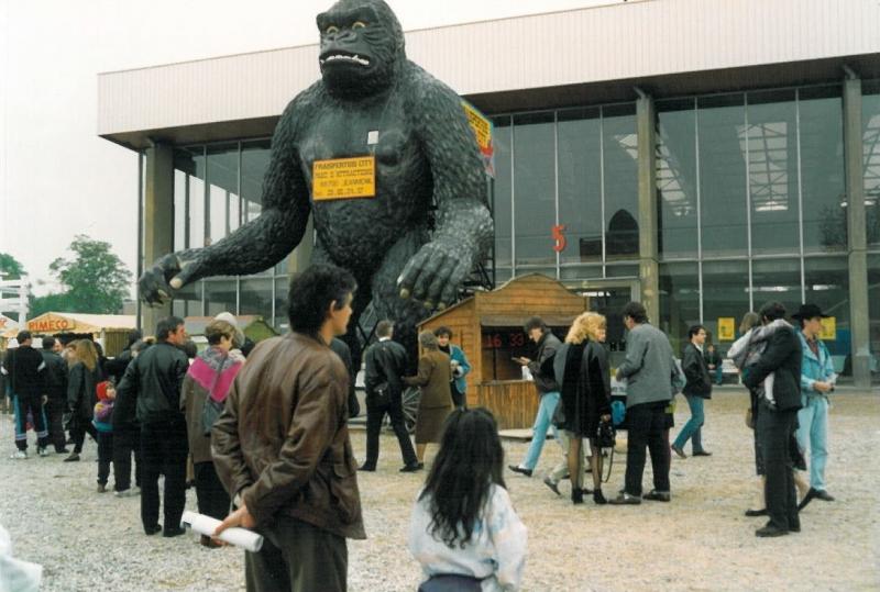 gorille 2a