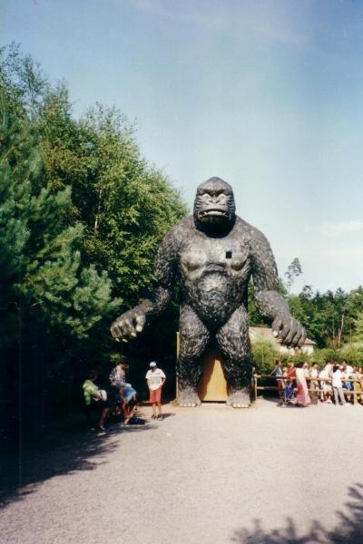 gorille2001fc
