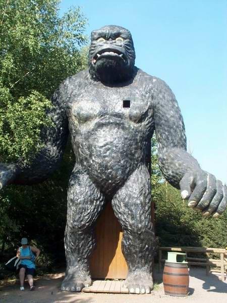 gorille2003b
