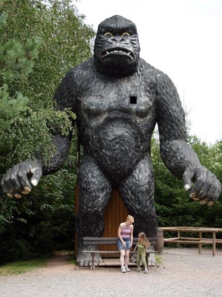 gorille2004
