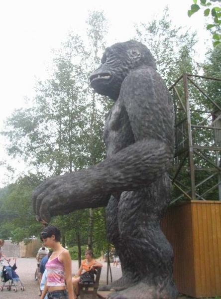 gorille2004b