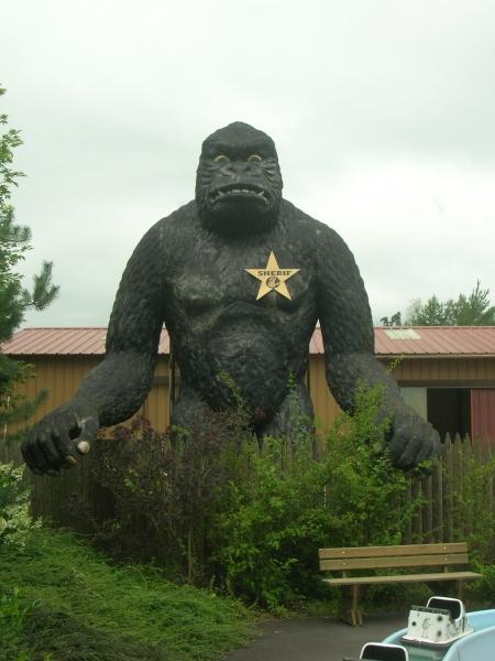 gorille2007a