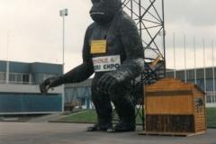 gorille 1