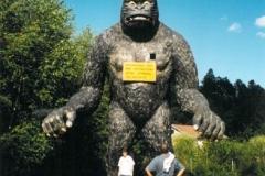 gorille 6